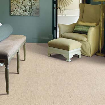 Caress Carpet by Shaw | Elkhart, IN